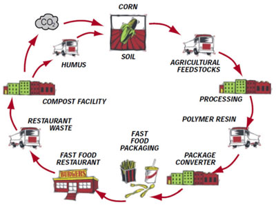 Bioeconomia a bioenergy