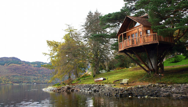 albergo sull albero