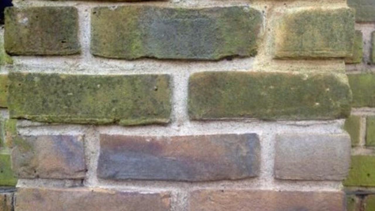 Togliere Intonaco Da Mattoni eliminare la muffa dai muri esterni - idee green