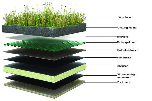 Tetto giardino stratigrafia terminali antivento per for Sezione tetto giardino
