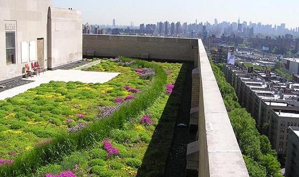 tetto verde estensivo intensivo