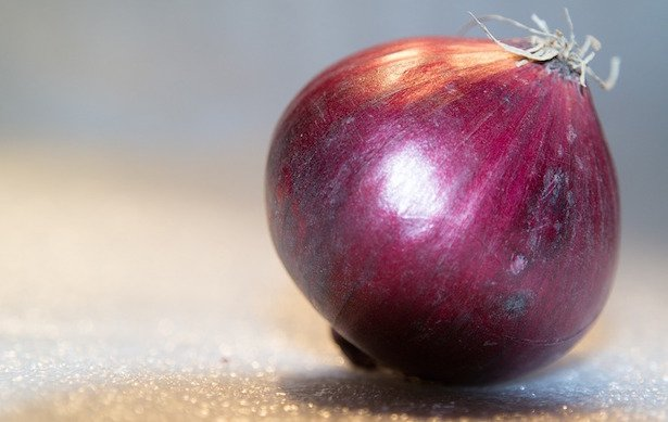 cipolla rossa di tropea coltivazione
