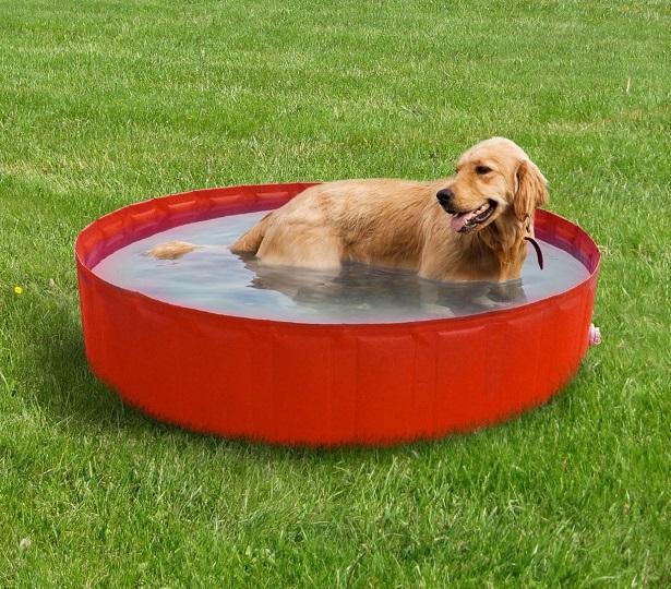 cane che soffre il caldo
