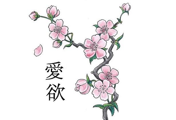 Fiori di ciliegio significato e immagini idee green for Fiori di ciliegio dipinti