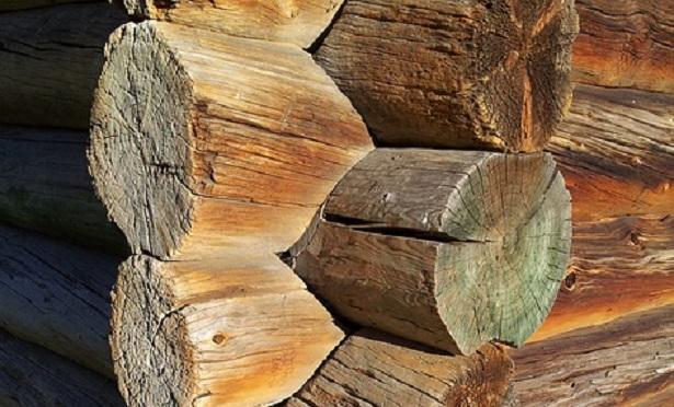 Casette in legno: modelli e prezzi   idee green