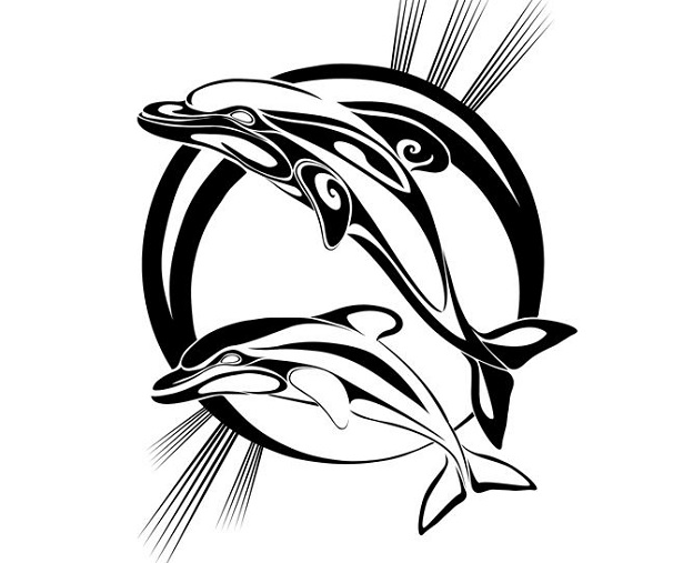 delfini del mediterraneo da colorare