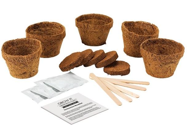 piante carnivore set regalo