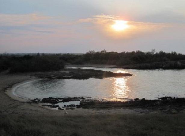torre guaceto riserva naturale