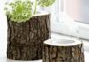 come fare vaso con tronco