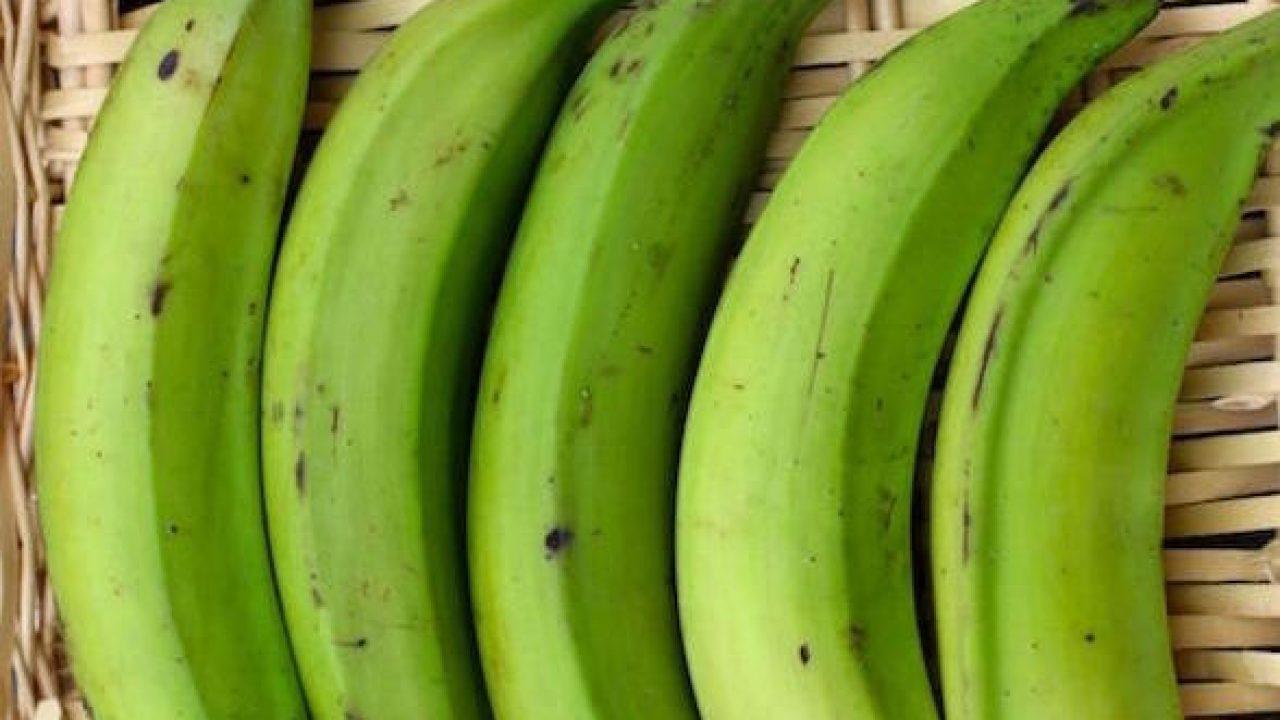 Pianta Di Banana Foto platano, frutto e caratteristiche - idee green