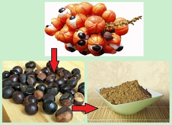 guarana benefici proprieta
