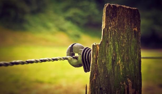 recinzione per orto