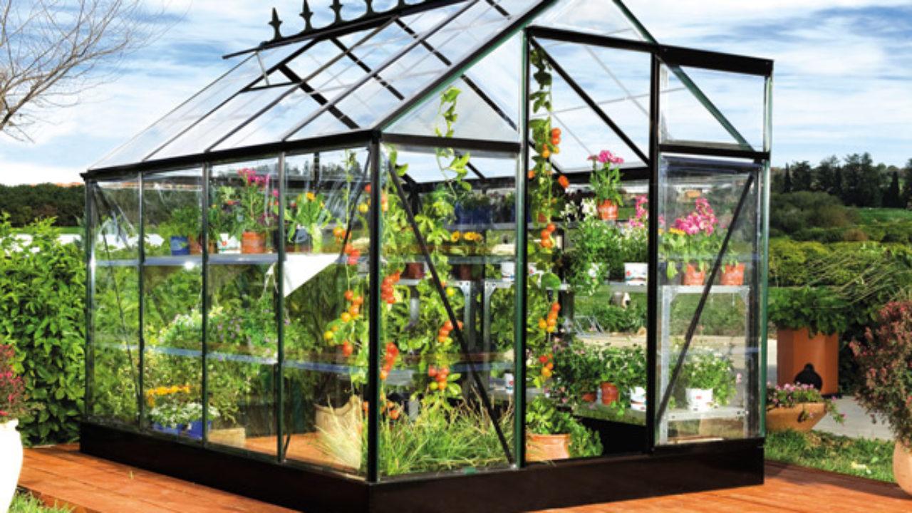 Piccole Serre Da Casa serra per piante e fiori - idee green