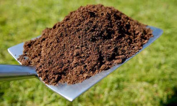 compost o letame
