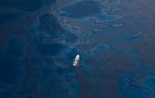 Disastri ambientali causati dal petrolio