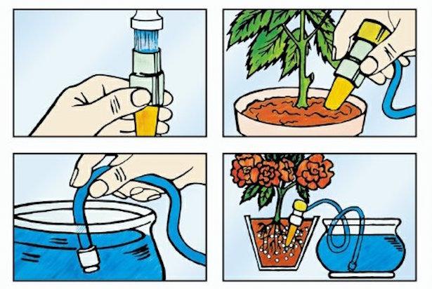 Irrigazione delle piante durante le vacanze idee green for Impianto irrigazione vasi