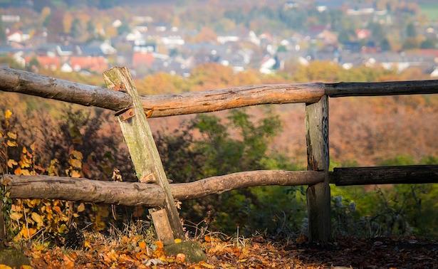 come curare legno