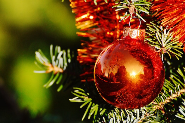 Come decorare l 39 albero di natale idee green - Decorare albero di natale idee ...