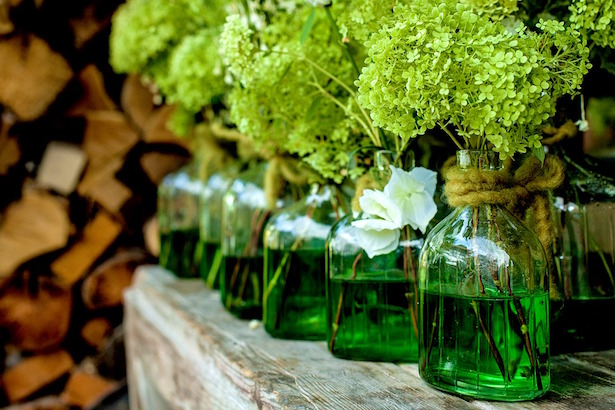 come mantenere fiori freschi
