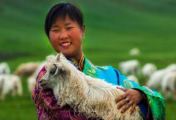 Caprette tibetane