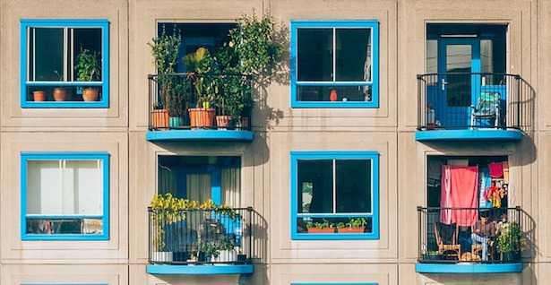 attirare uccelli sul balcone
