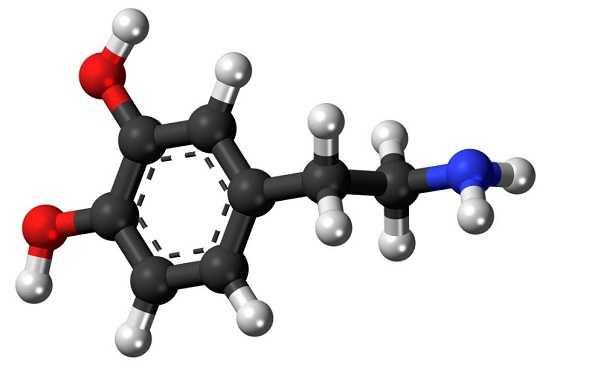 Dopamina naturale
