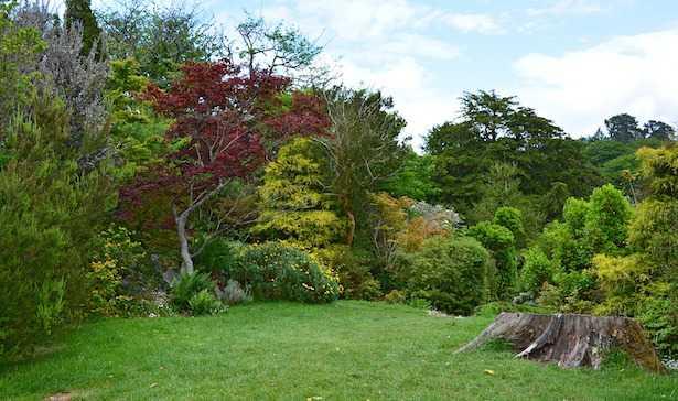 giardino inglese come farlo