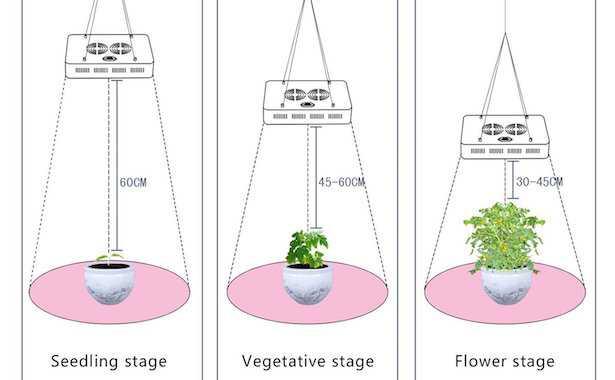 lampade per piante
