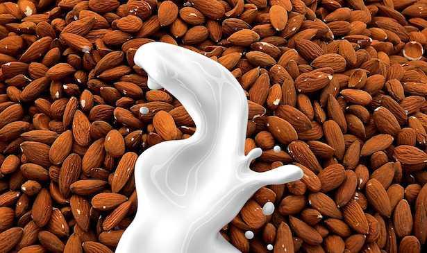 latte vegetale con estrattore