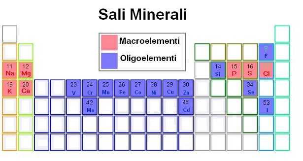 Sali minerali