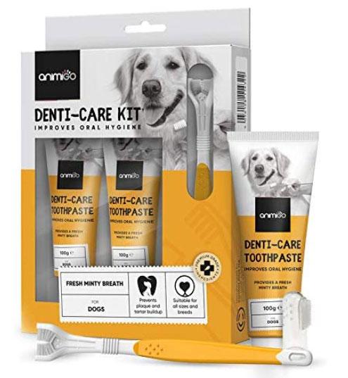 dentifricio spazzolino cani