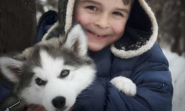Razze di cani adatti ai bambini