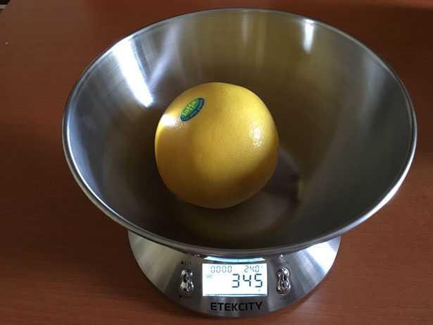 bilancia pesa alimenti digitale