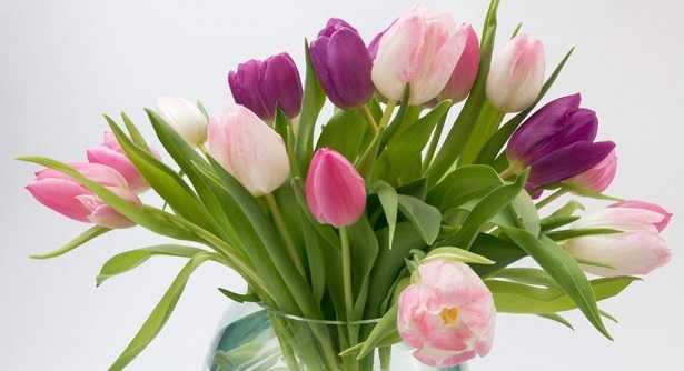 Eccezionale Mazzo di fiori: come sceglierlo - Idee Green LE79