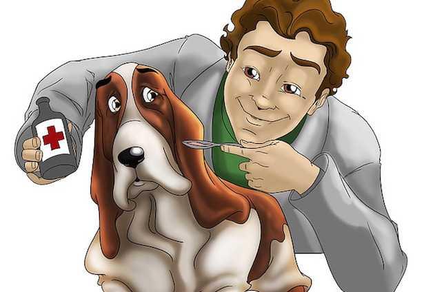 Detrazione spese veterinario