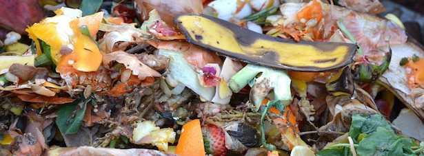 compostaggio fai da te