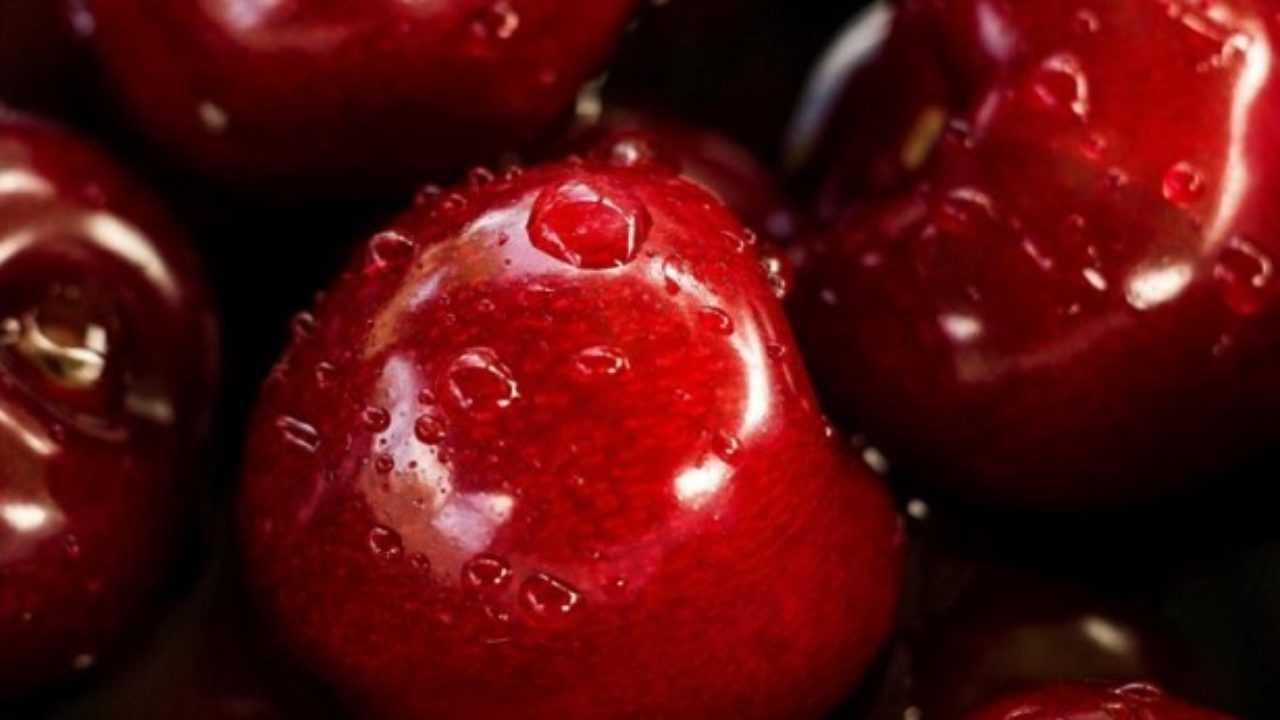 dieta al superfetabolismo di fase 1