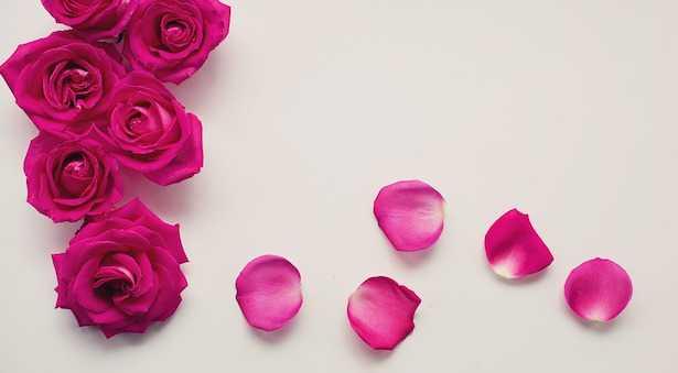 dolci con petali di rose