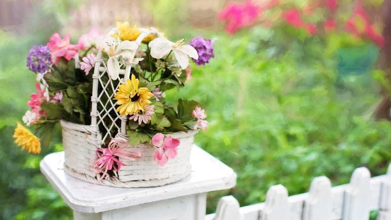 Come Recintare Un Giardino recinzioni da giardino, tutte le soluzioni - idee green