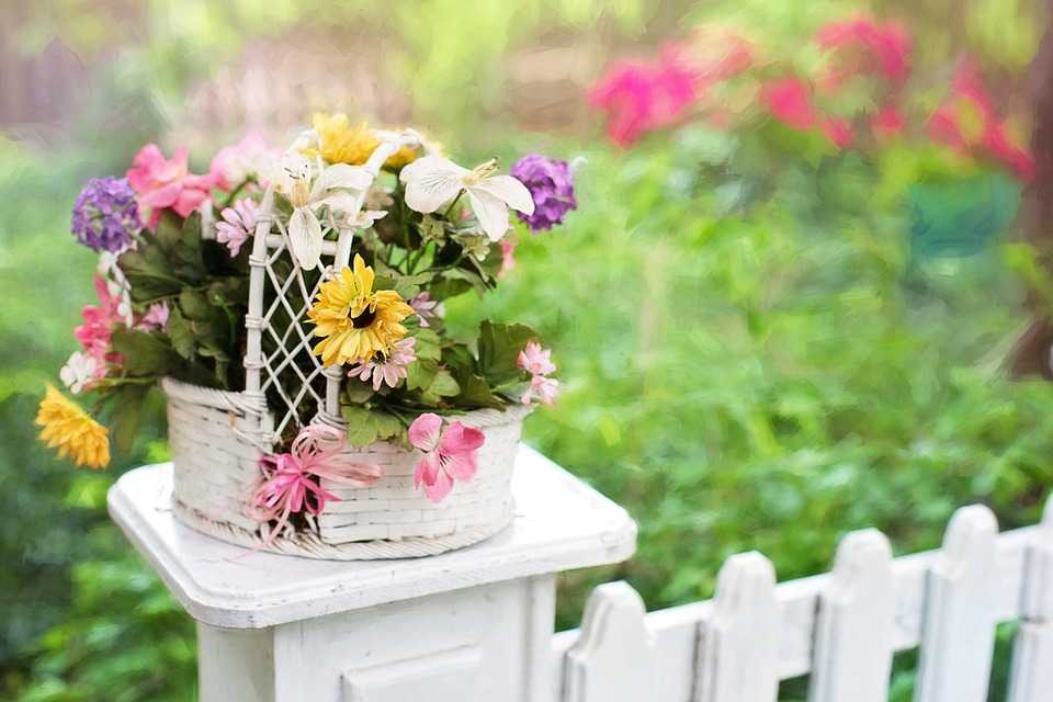 Recinzioni da giardino