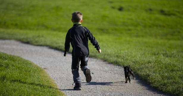 Camminare con il cane fa bene