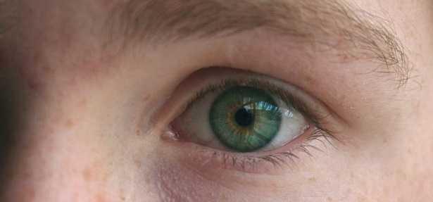 Colore occhi