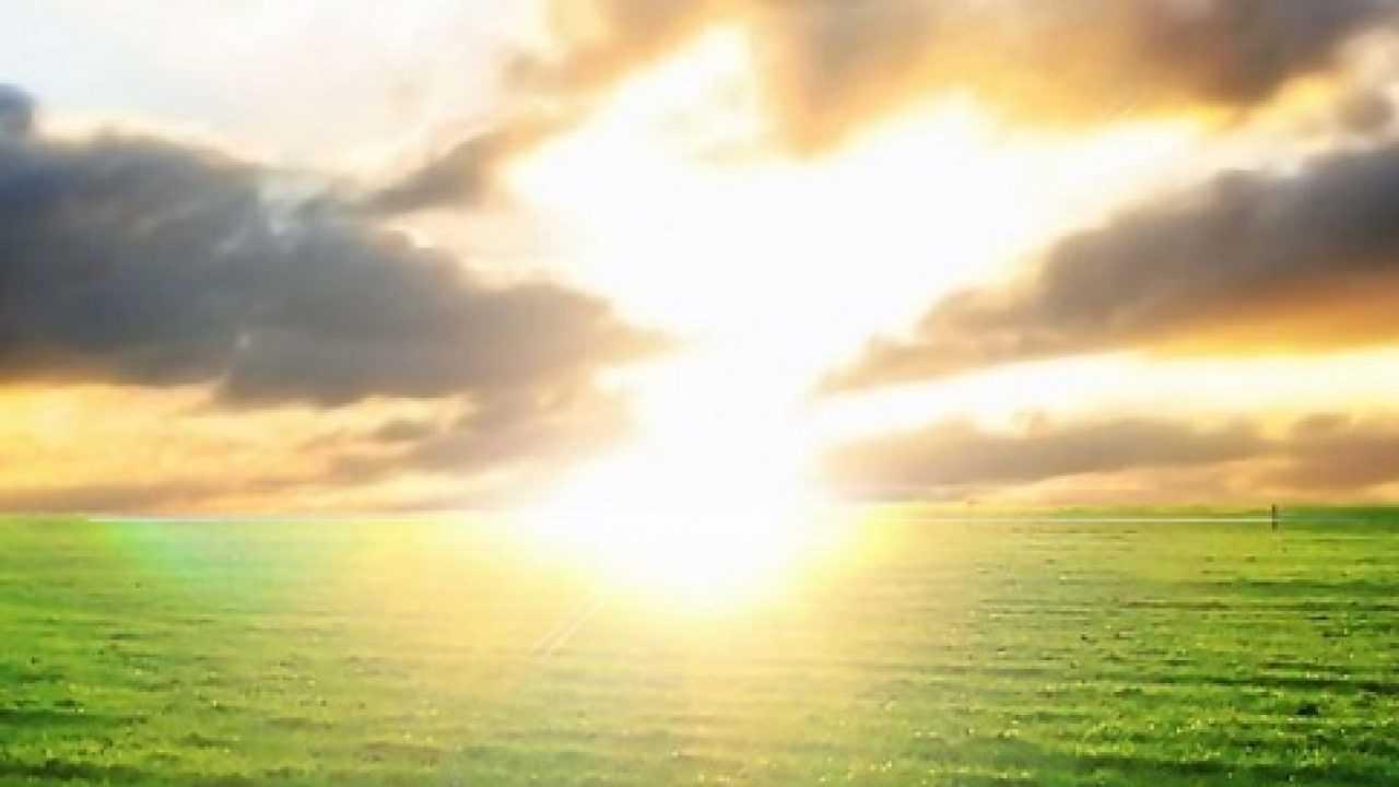 Frasi Sul Sole Idee Green