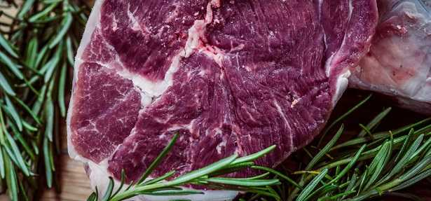 Fetta di carne alimento con proteine