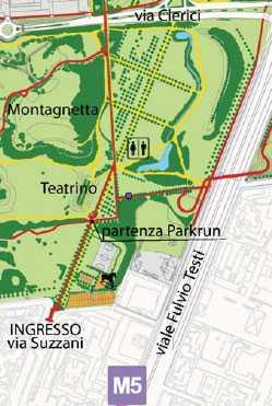 pioppo cipressino ideegreen