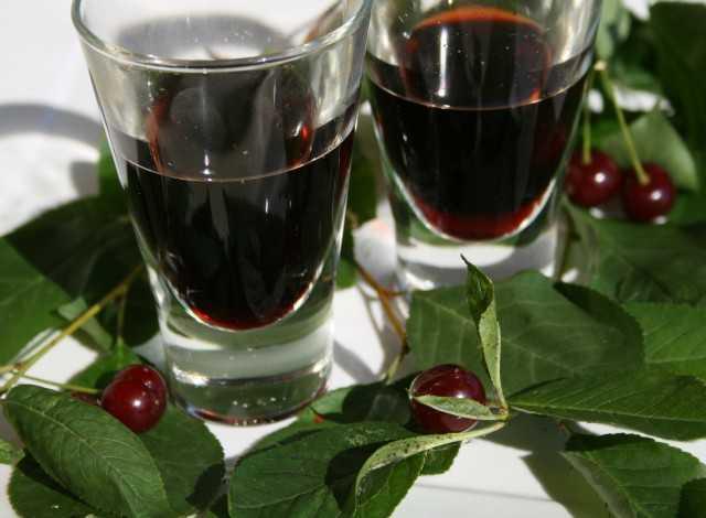 ricetta visciola preparazione liquore