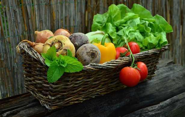 Cosa possono mangiare i vegetariani