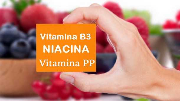vitamina PP dove si trova niacina carenza alimenti