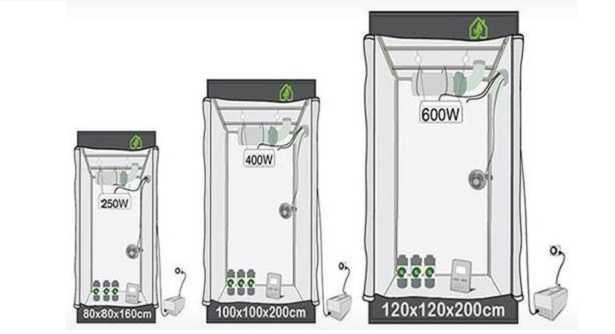 Controllo dell'aria nella coltivazione indoor