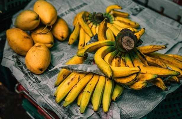 Banana per il cane